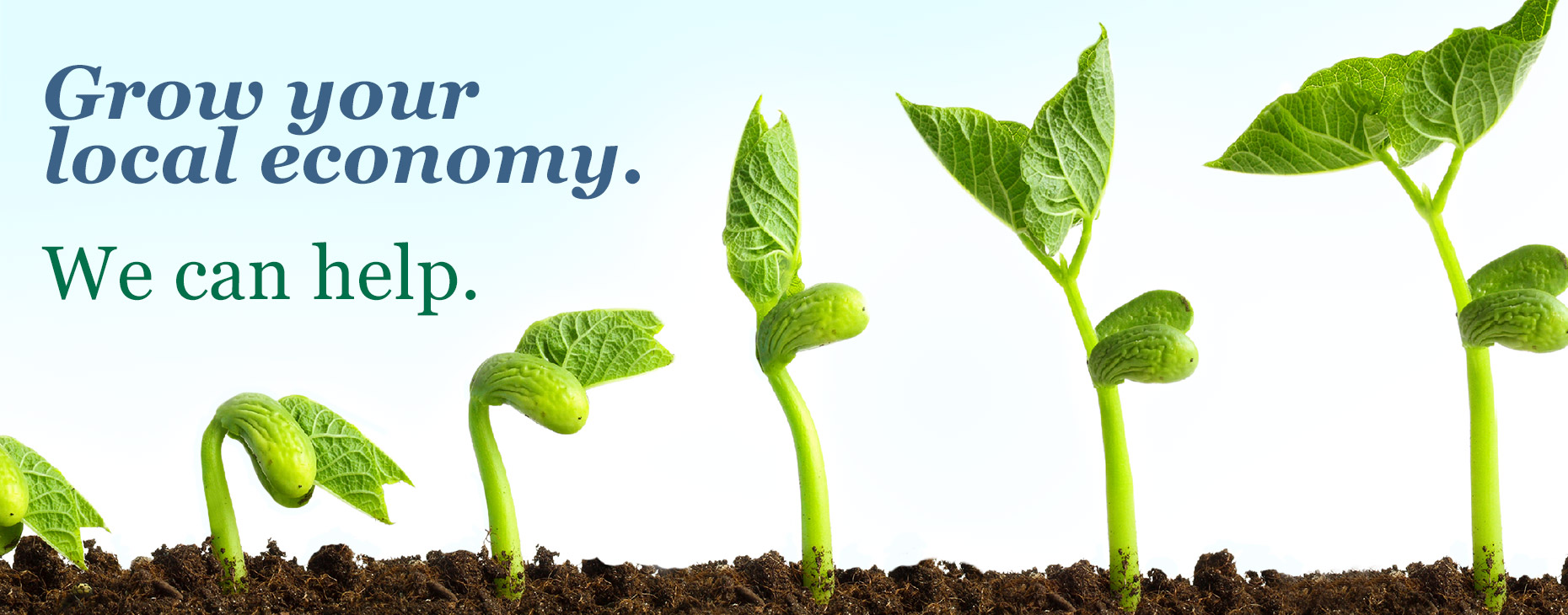 Grow Your Local Economy. We can help.